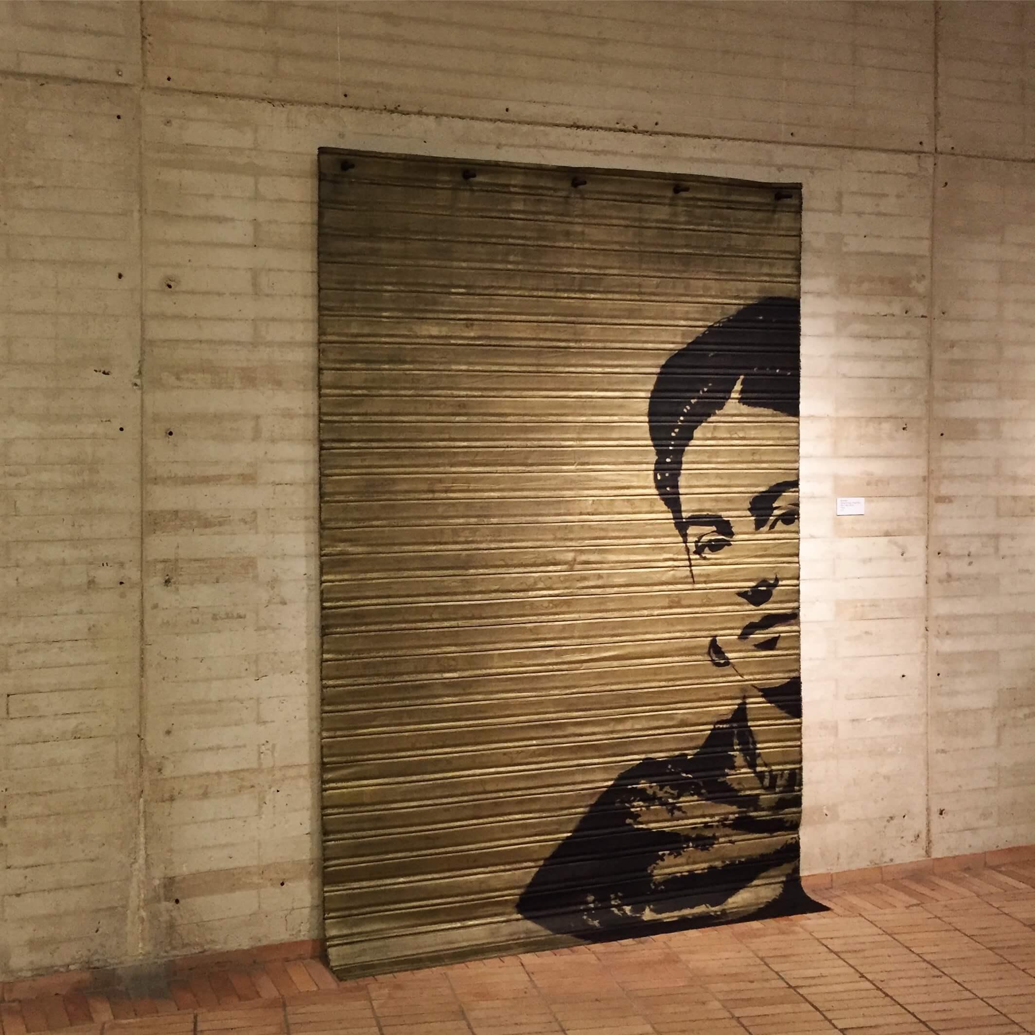 Diego Diaz Artista / Instalación - Frida Kahlo, persiana, artista colombiano